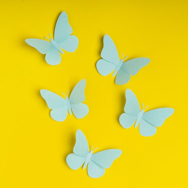 3D paper butterfly