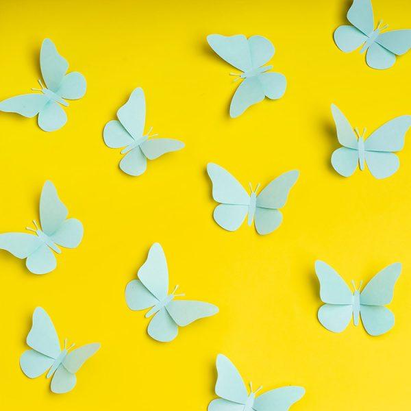 Blue paper butterflies