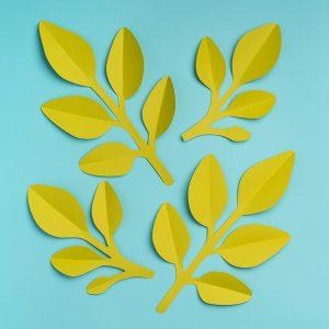 Eucalyptus Paper Leaves Template