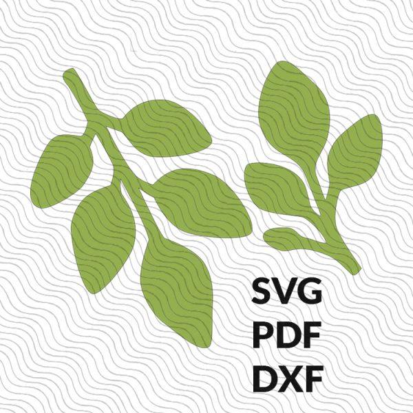 Eucalyptus Paper Leaf Template