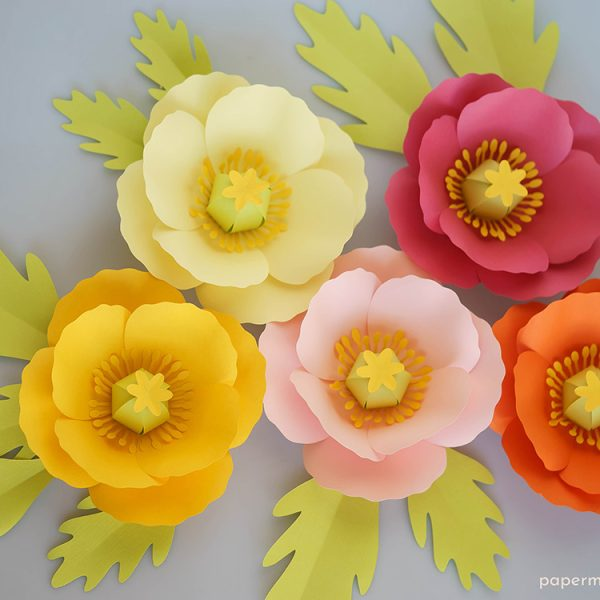 paper Iceland poppies