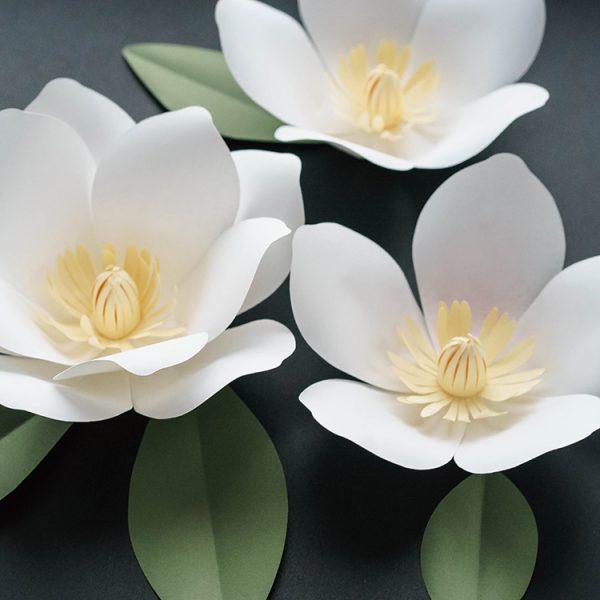 white magnolia paper flower