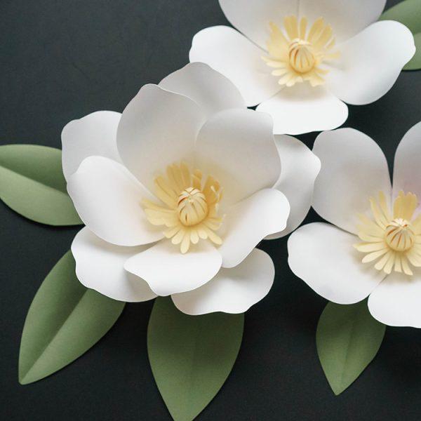 white magnolia paper flowers